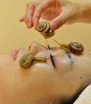 terapia ślimakami