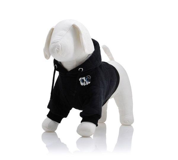 Wiedziałyście, że Karl Lagerfeld projektuje dla zwierząt?