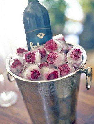 Róże w kostkach lodu