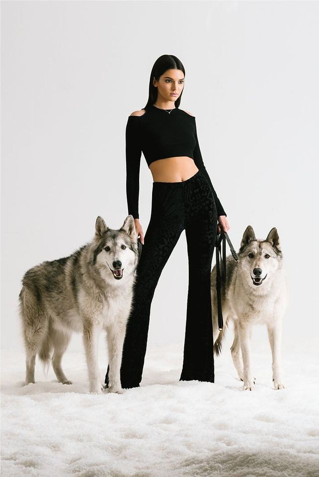 Kolekcja Kendall i Kylie Jenner dla marki Pacsun (FOTO)
