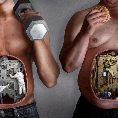 Dieta - śmieszne memy i zdjęcia
