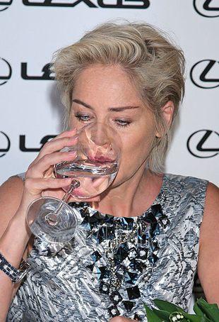 Sharon Stone cała w srebrze (FOTO)