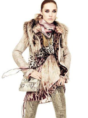 Roberto Cavalli - lookbook jesień 2011 (FOTO)