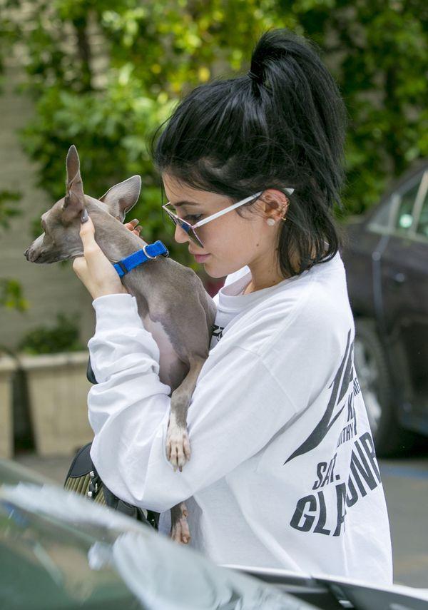 Kylie Jenner bez doczepów już tak nie zachwyca (FOTO)