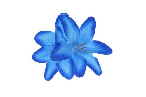 Kolor sezonu: błękit