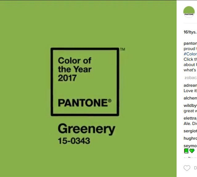 Już jest! Oto kolor roku 2017 wg Pantone (FOTO)