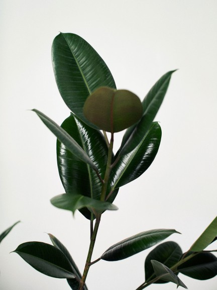 Marcowy lookbook Mango - 70's Minimal (FOTO)