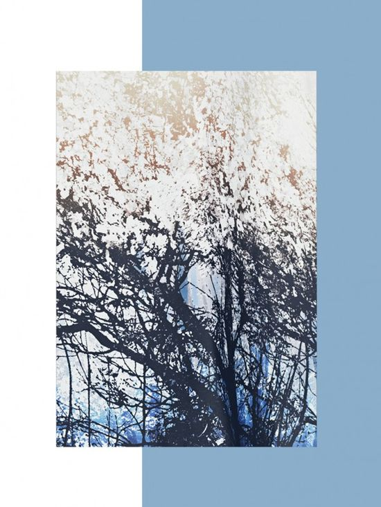 Mango Forest lookbook jesień-zima 2013/2014