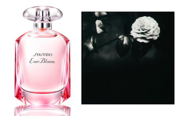 Shiseido wprowadza zapach Ever Bloom - pierwszy od 2007 roku