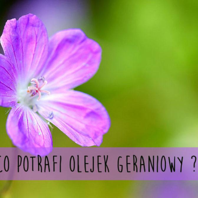 Olejek z geranium – skarb dla zdrowia i urody (FOTO)
