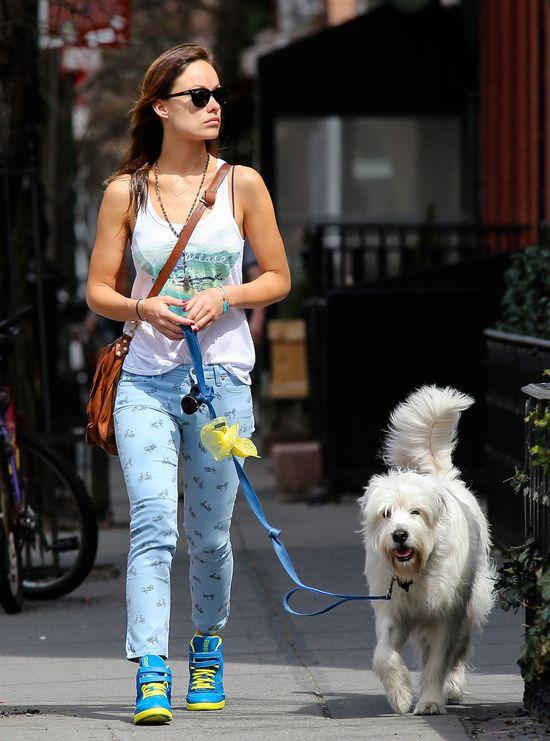 Olivia Wilde w kolorowych butach