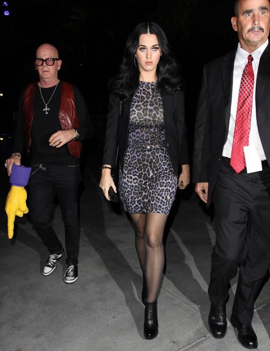 Katy Perry w panterkowej sukience