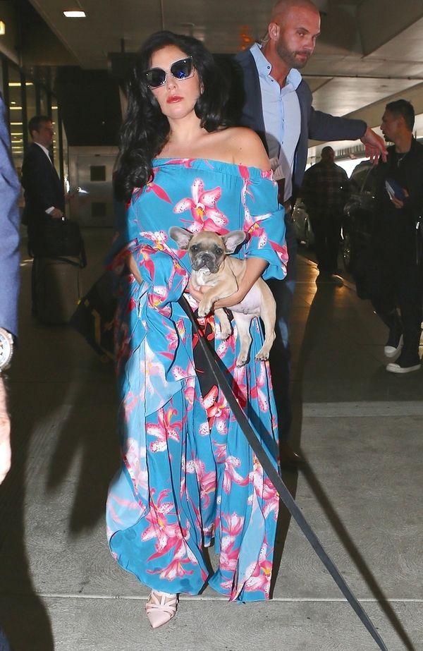 Lady Gaga potraktowała psa jak modny dodatek... (FOTO)