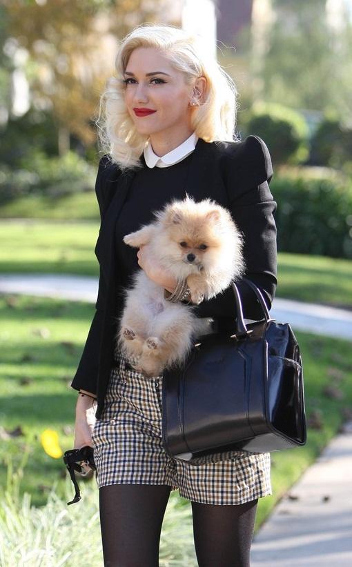 Gwen Stefani na okładce styczniowego wydania Marie Claire UK