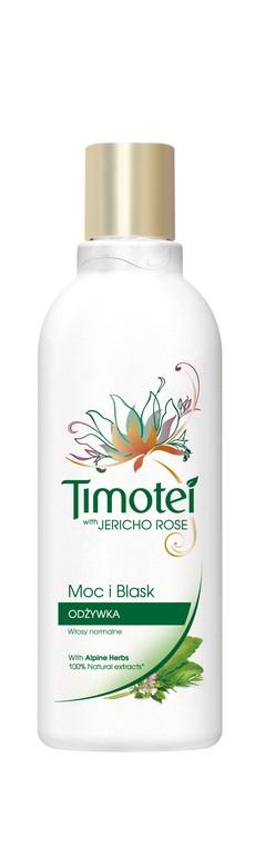 Nowy Timotei z różą z Jerycha w nowej butelce