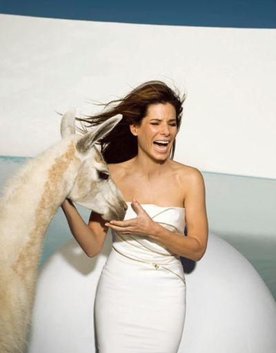 Sandra Bullock promienieje