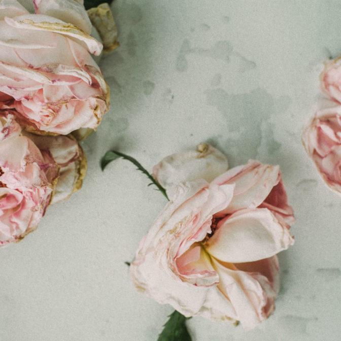Woda różana – jak przygotować ją w domu?