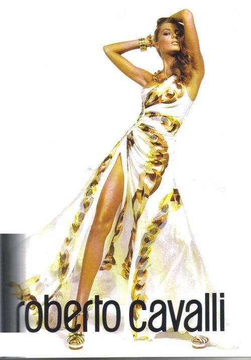 Daria Werbowy dla Cavalli