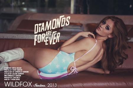 Wildfox Swimwear 2013 (FOTO)