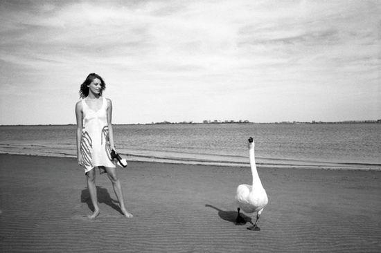 Daria Werbowy dla Maiyet (FOTO+VIDEO)