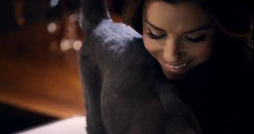 Eva Longoria w reklamie karmy dla kotów Sheba