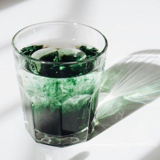 chlorofil w płynie do picia